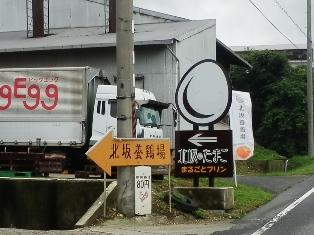 五斗長垣内遺跡10.jpg