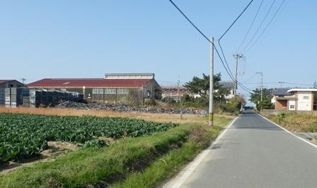 あわじ浜離宮3.jpg